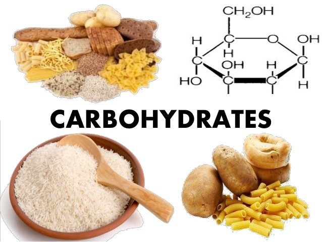Carbohydrates-tang-cuong-sinh-ly-nam