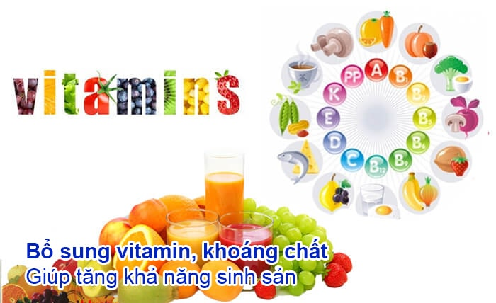vitamin và khoáng chất giúp tăng khả năng sinh sản