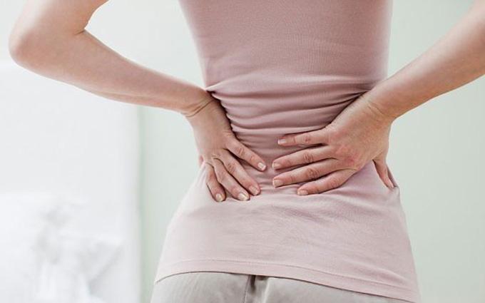 Estradiol làm chậm quá trình loãng xương ở nữ giới