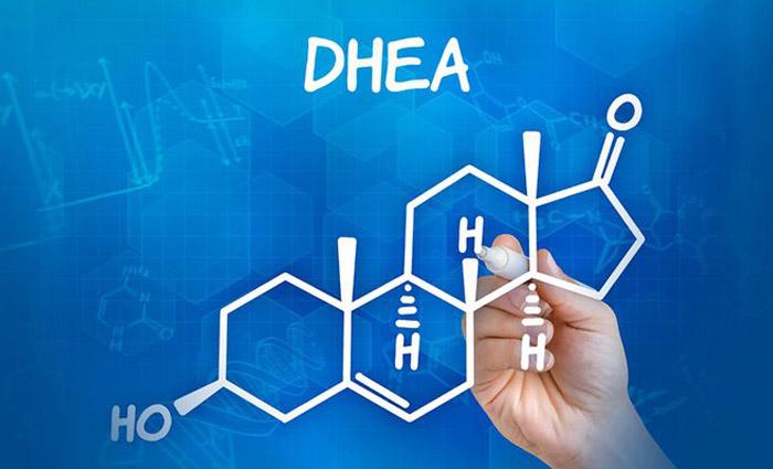 dhea là hormone quan trọng đối với cơ thể